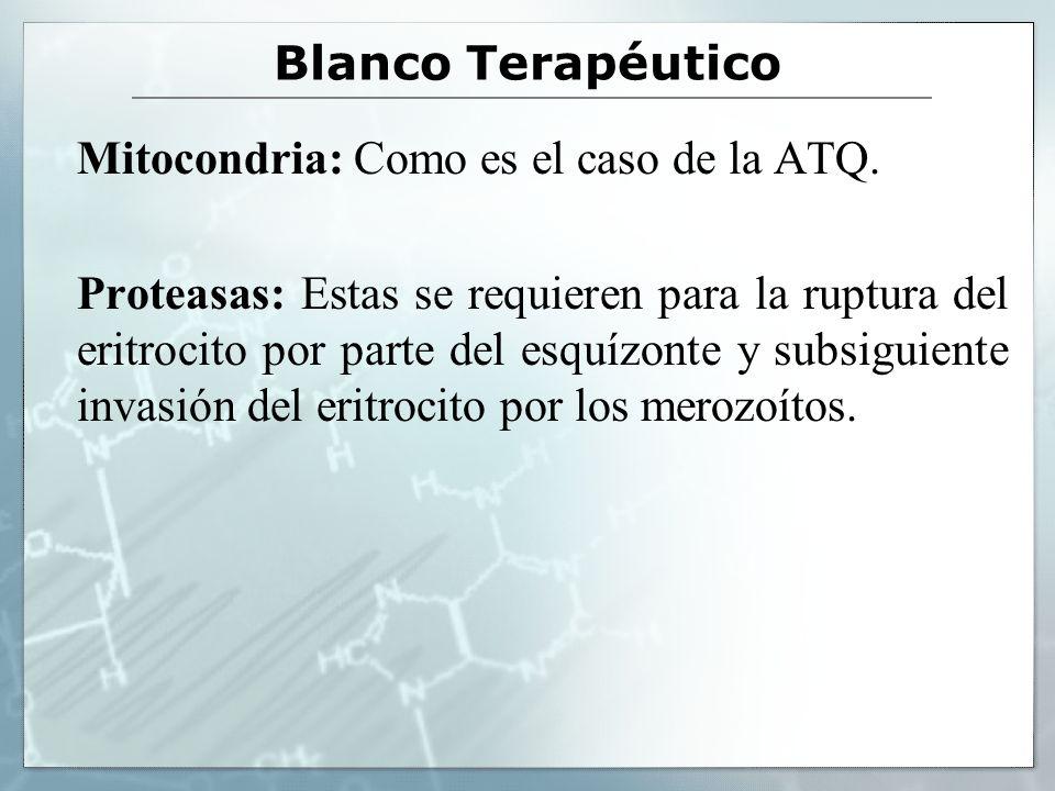 Blanco Terapéutico Mitocondria: Como es el caso de la ATQ.