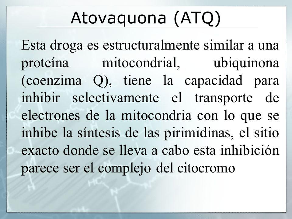 Atovaquona (ATQ)