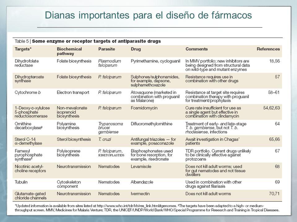 Dianas importantes para el diseño de fármacos