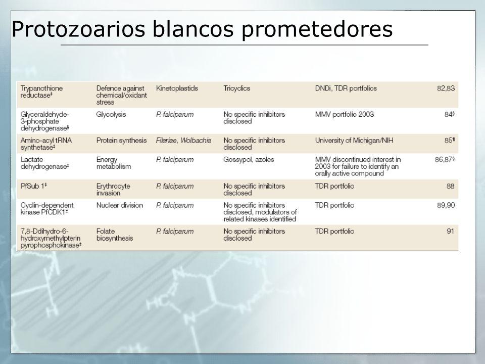 Protozoarios blancos prometedores