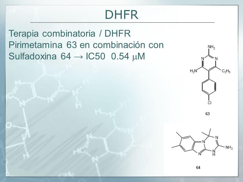 DHFR Terapia combinatoria / DHFR