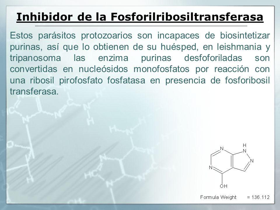 Inhibidor de la Fosforilribosiltransferasa