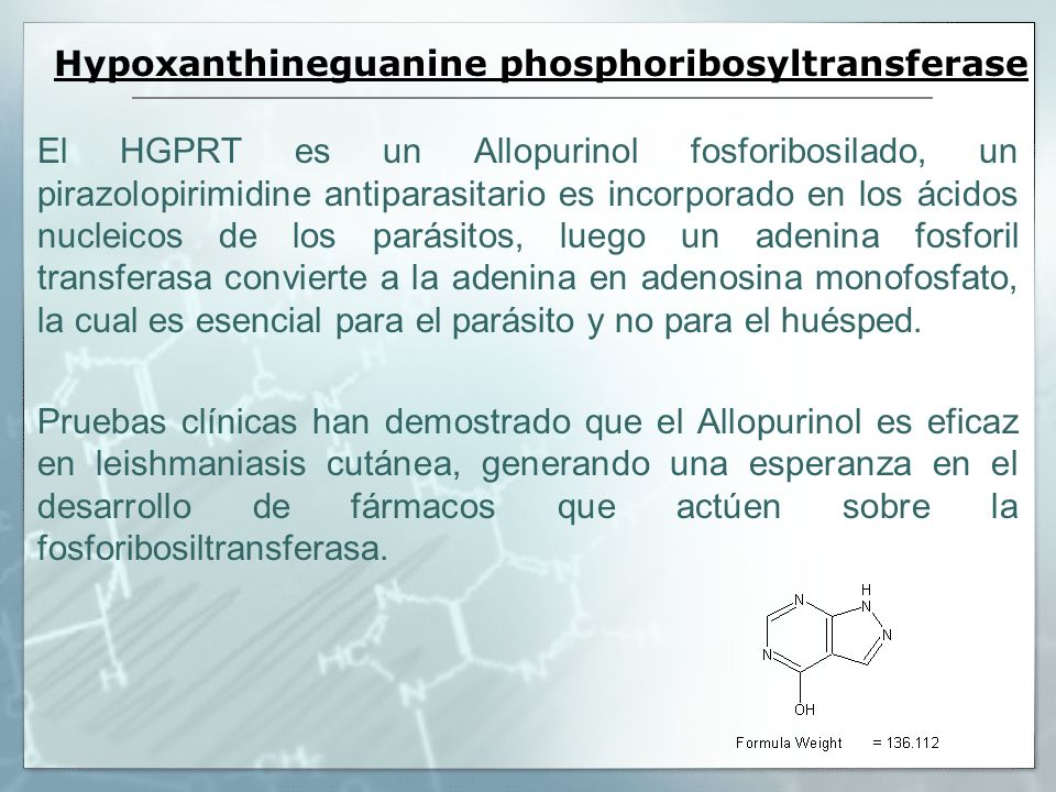 Hypoxanthineguanine phosphoribosyltransferase