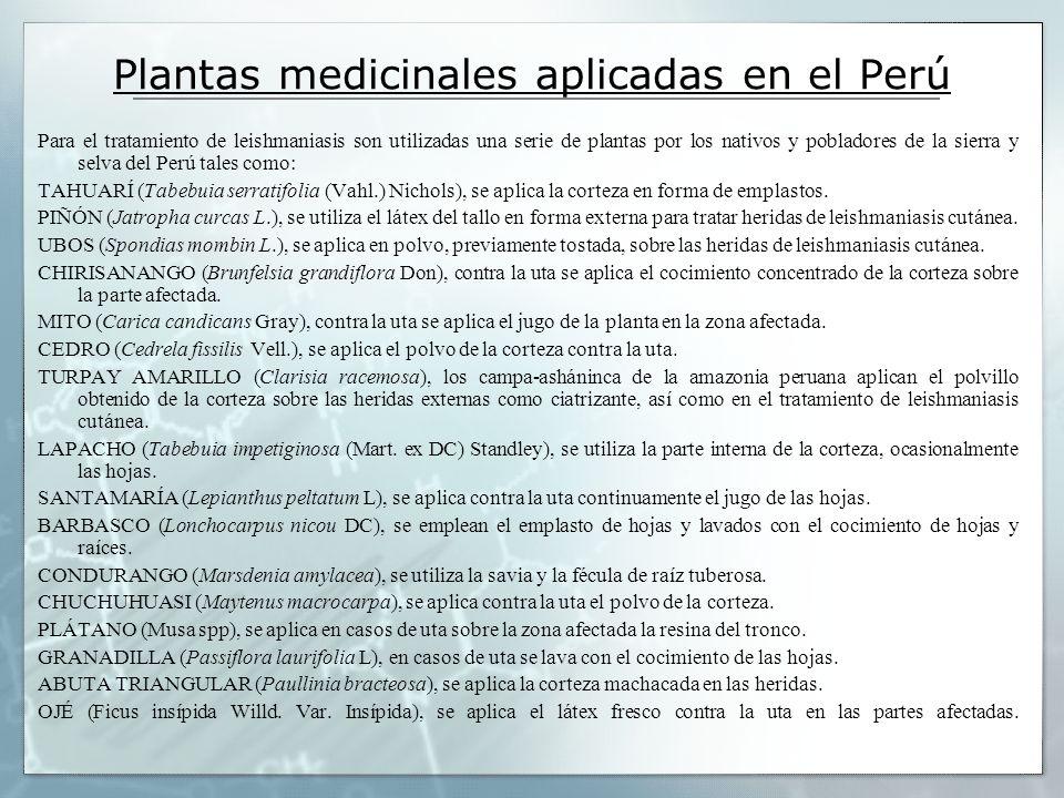 Plantas medicinales aplicadas en el Perú