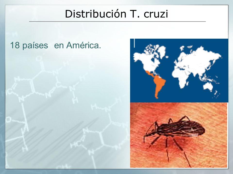 Distribución T. cruzi 18 países en América.