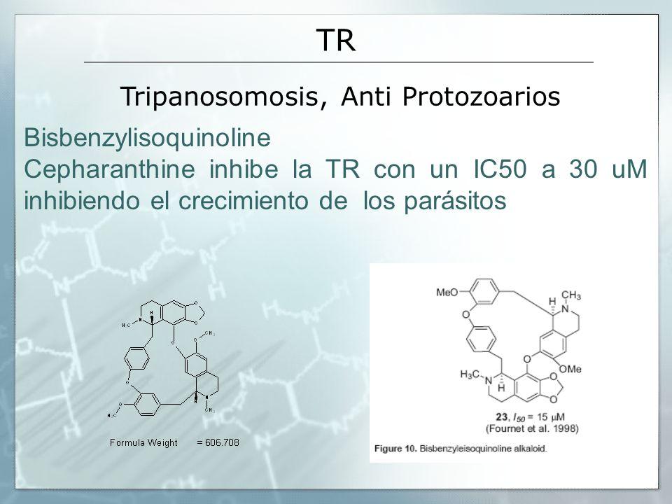 Tripanosomosis, Anti Protozoarios
