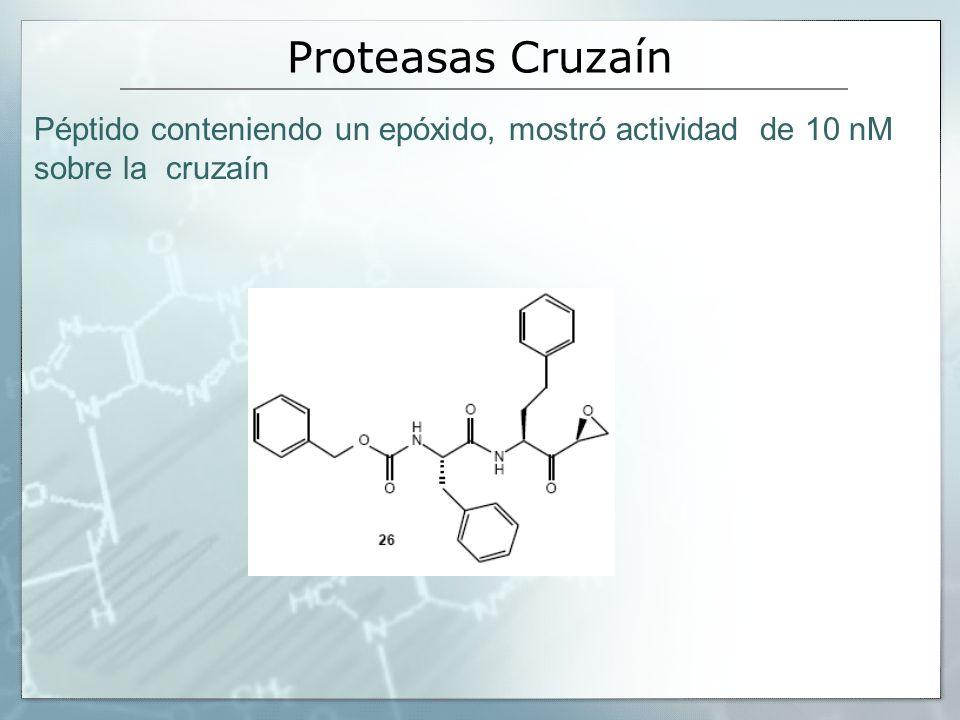Proteasas Cruzaín Péptido conteniendo un epóxido, mostró actividad de 10 nM sobre la cruzaín