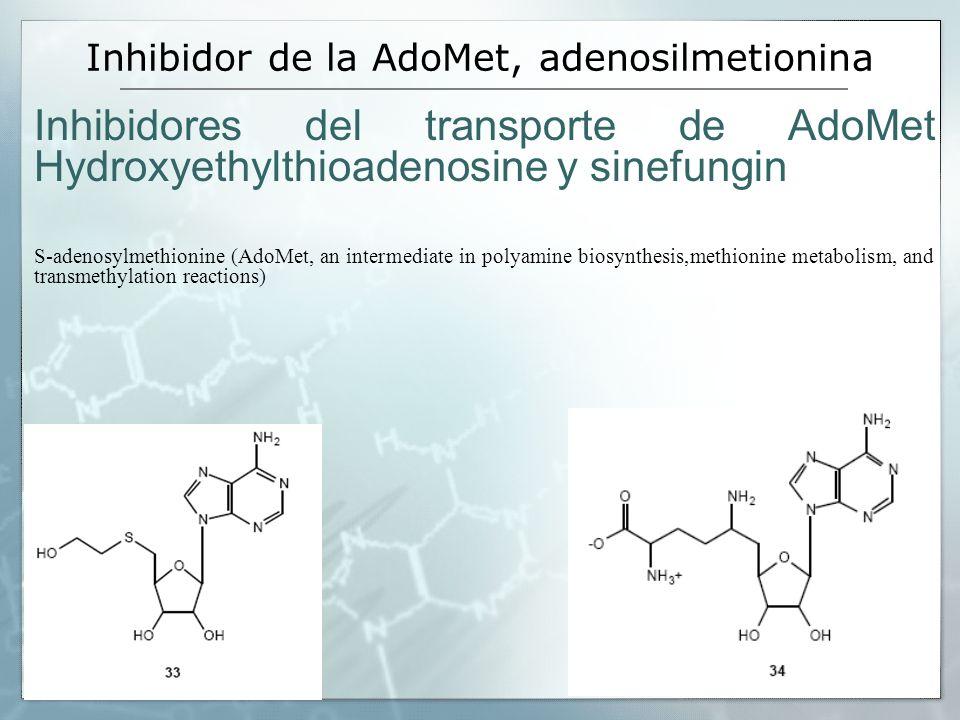Inhibidor de la AdoMet, adenosilmetionina