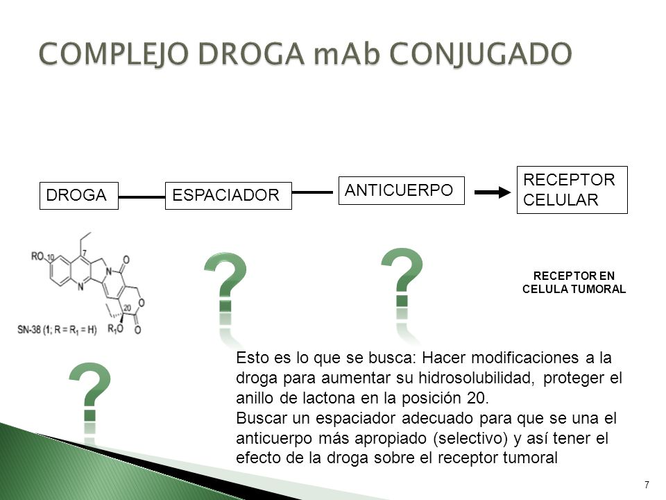 COMPLEJO DROGA mAb CONJUGADO