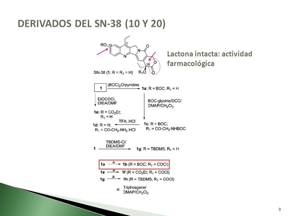 DERIVADOS DEL SN-38 (10 Y 20) Lactona intacta: actividad farmacológica