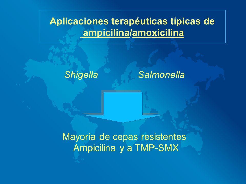 Aplicaciones terapéuticas típicas de ampicilina/amoxicilina