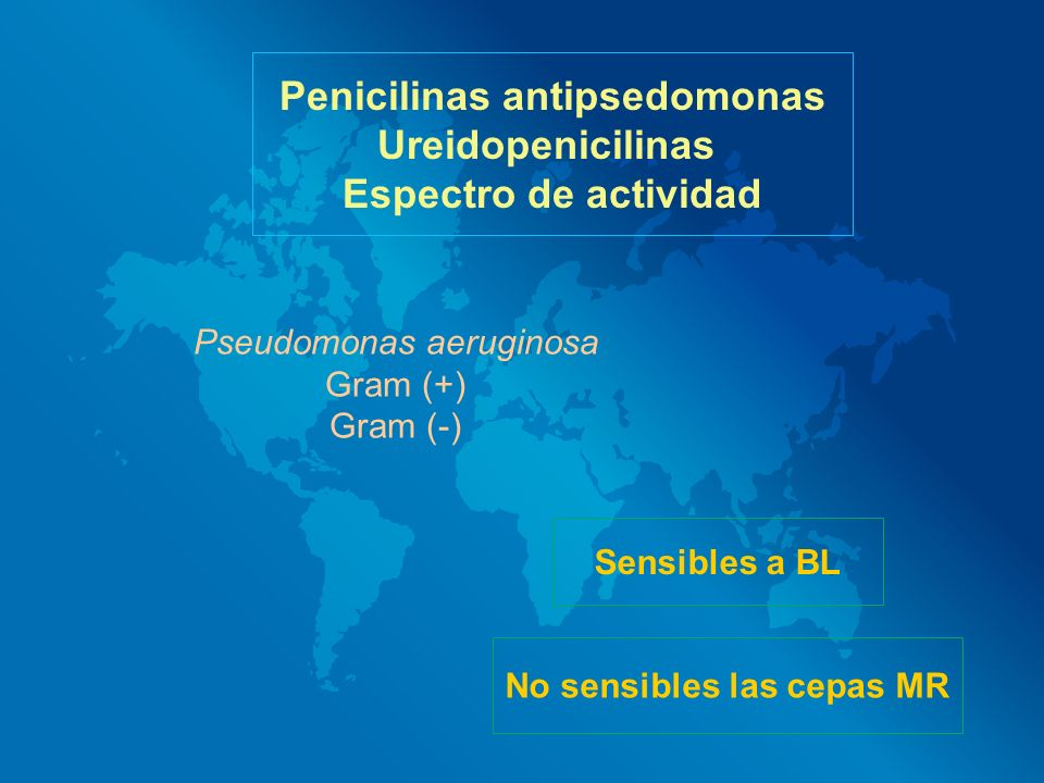Penicilinas antipsedomonas No sensibles las cepas MR