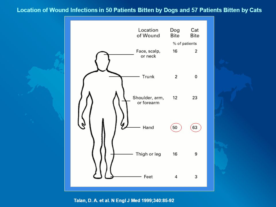 Location of Wound Infections in 50 Patients Bitten by Dogs and 57 Patients Bitten by Cats