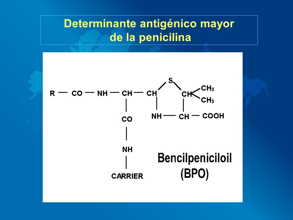 Determinante antigénico mayor