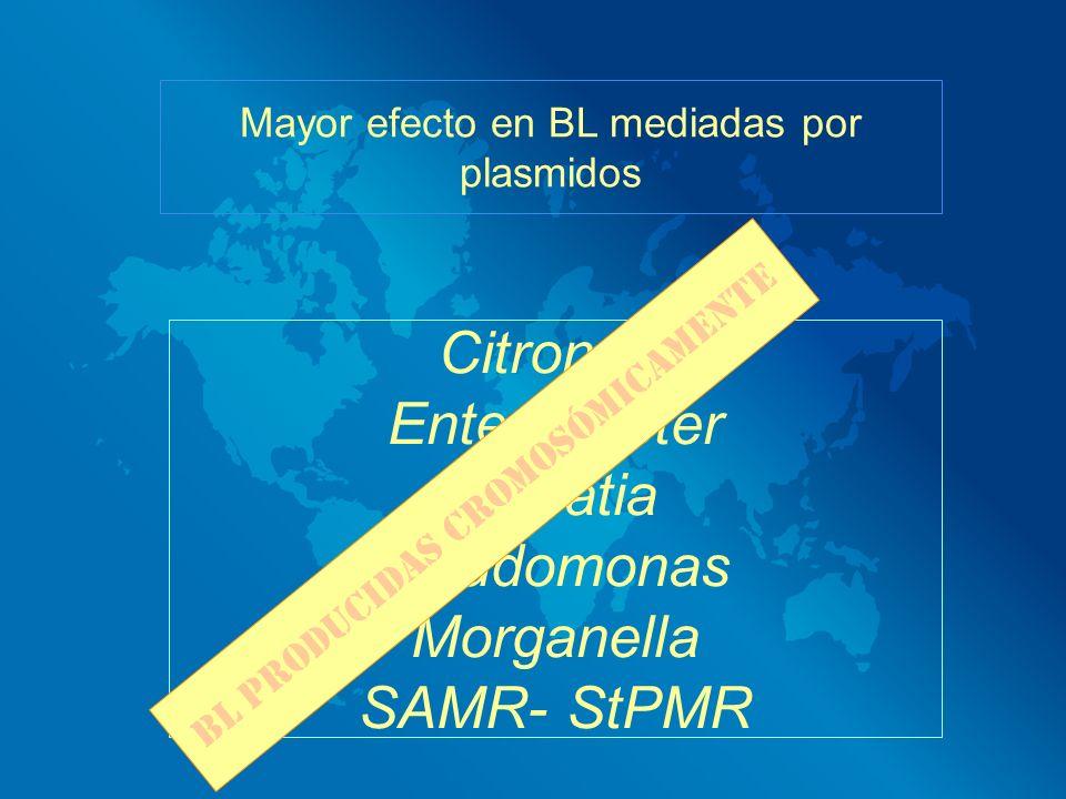 Citronela Enterobacter Serratia Pseudomonas Morganella SAMR- StPMR
