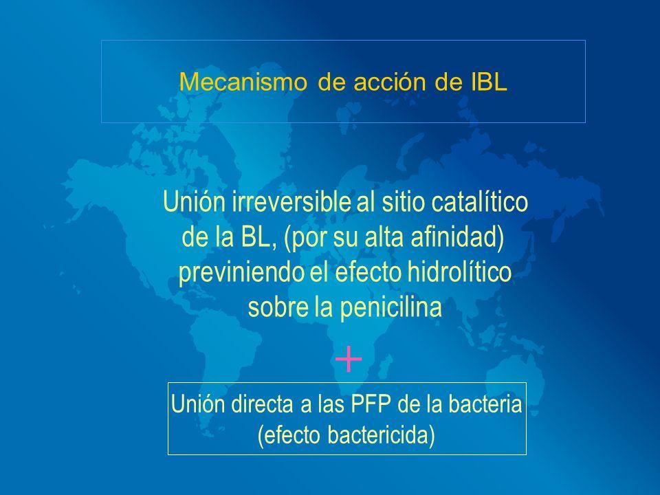 + Unión irreversible al sitio catalítico