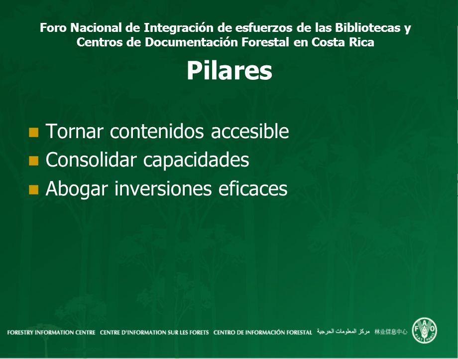 Pilares Tornar contenidos accesible Consolidar capacidades
