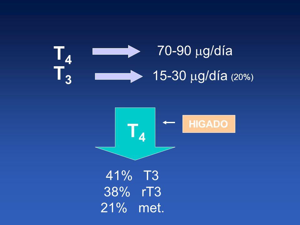 T4 T3 T4 70-90 g/día 15-30 g/día (20%) 41% T3 38% rT3 21% met.