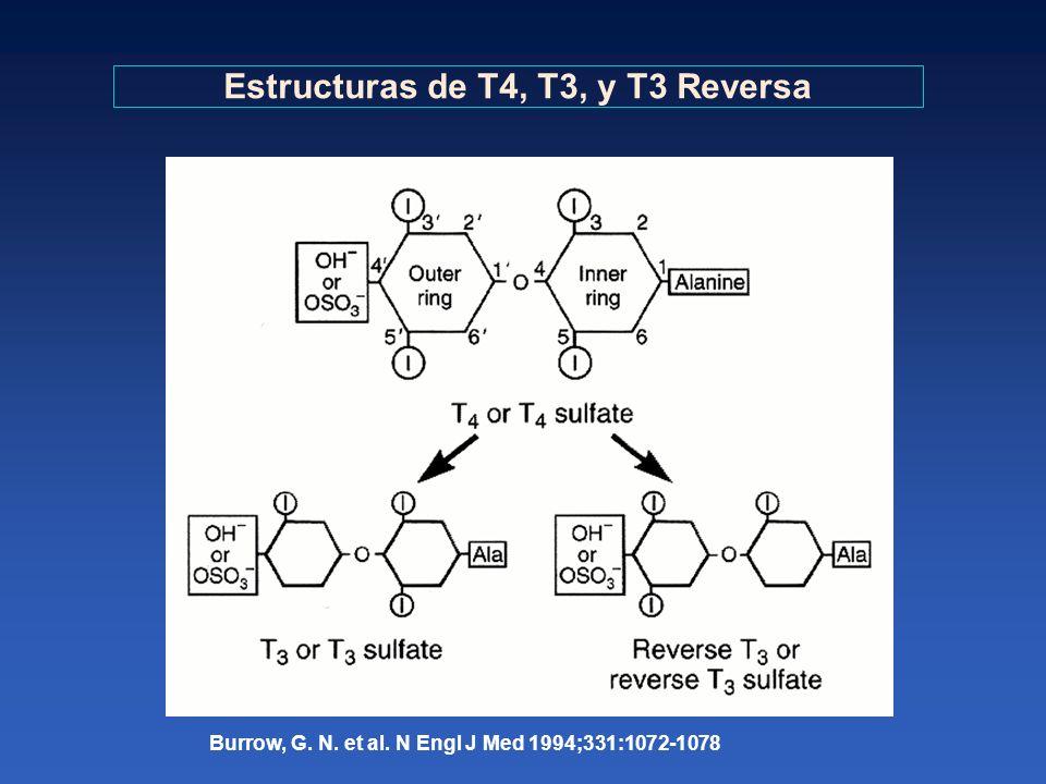 Estructuras de T4, T3, y T3 Reversa