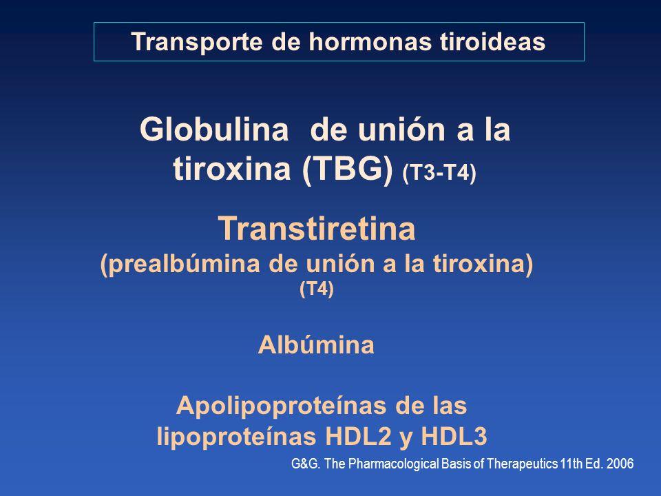 Globulina de unión a la tiroxina (TBG) (T3-T4) Transtiretina
