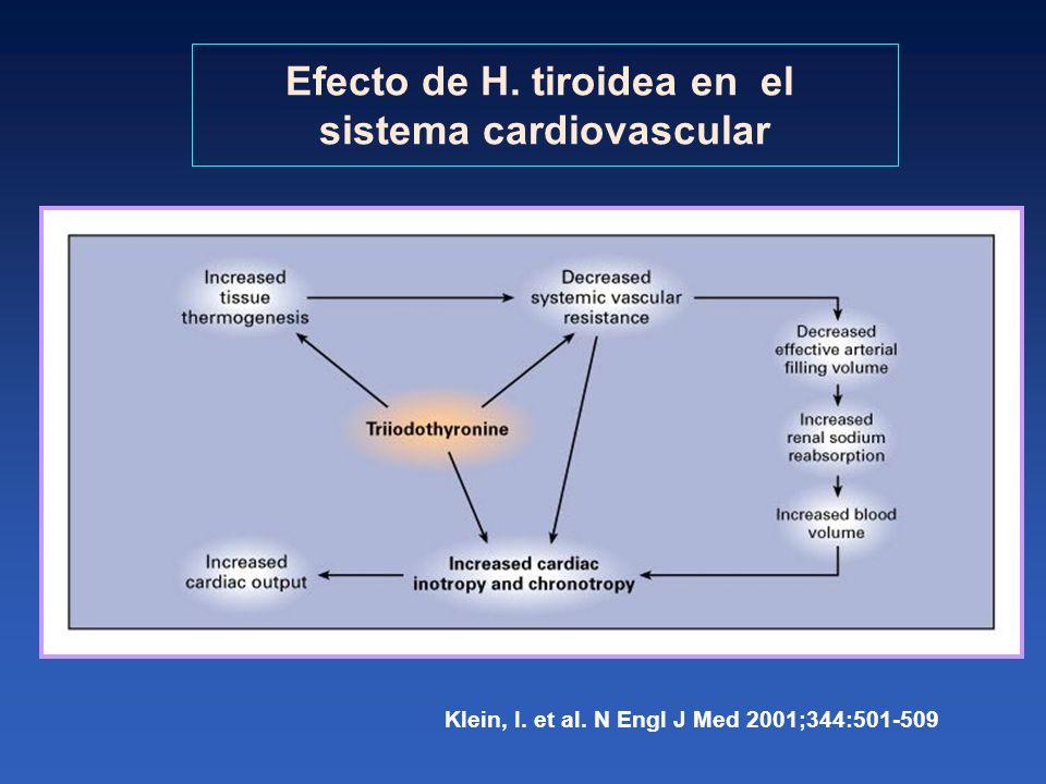 Efecto de H. tiroidea en el sistema cardiovascular