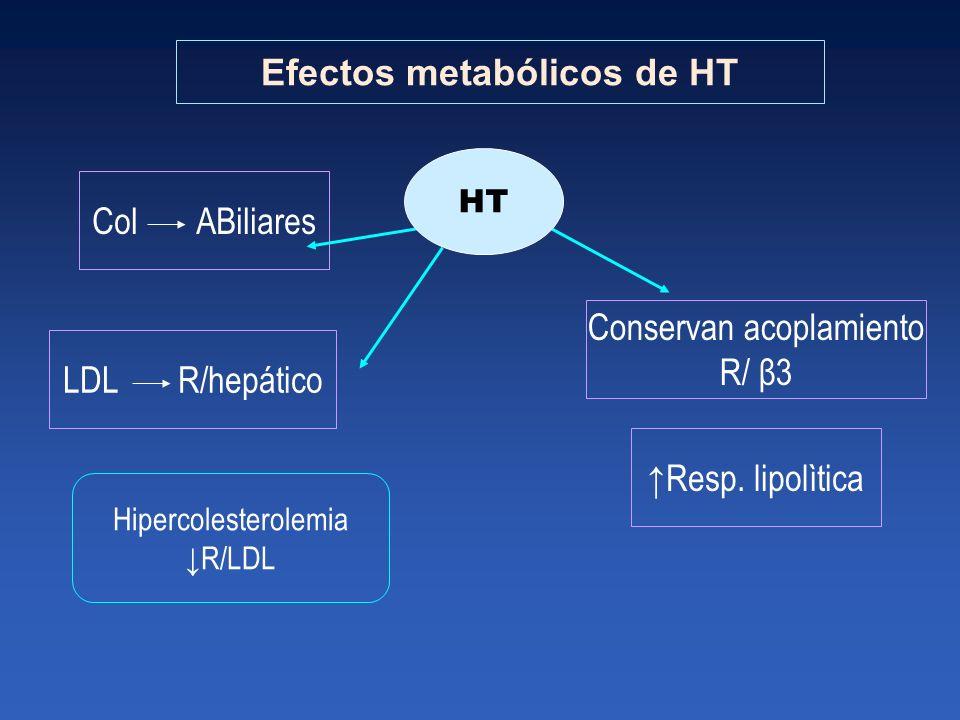 Efectos metabólicos de HT