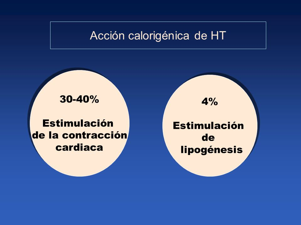Acción calorigénica de HT