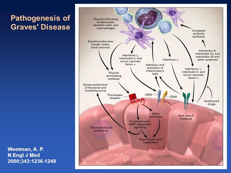 Pathogenesis of Graves Disease