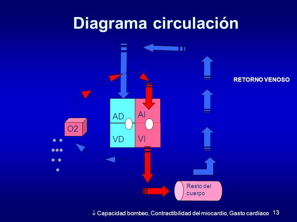 Diagrama circulación AD AI O2 VD VI   RETORNO VENOSO
