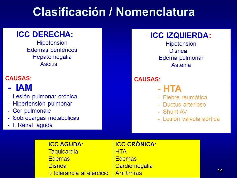 Clasificación / Nomenclatura