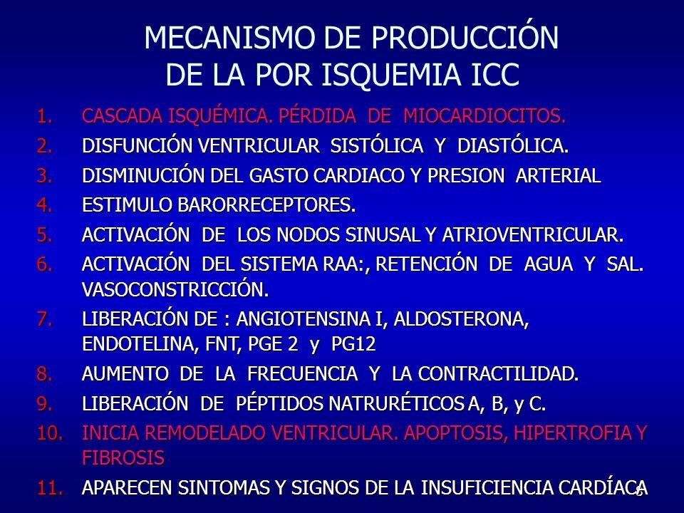 MECANISMO DE PRODUCCIÓN DE LA POR ISQUEMIA ICC