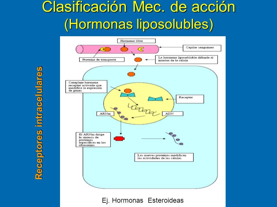 Clasificación Mec. de acción (Hormonas liposolubles)