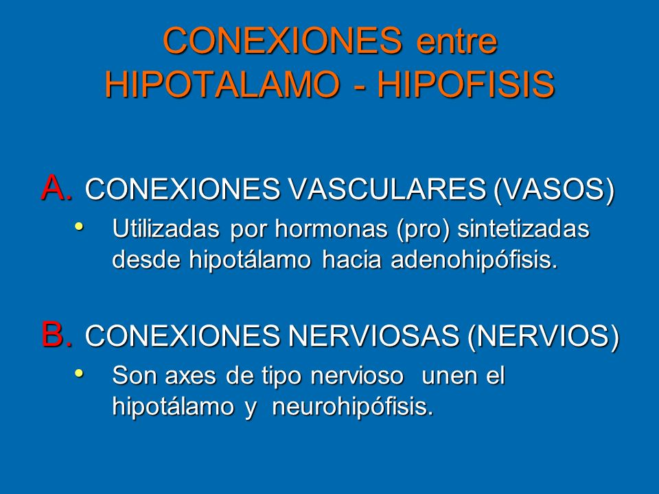 CONEXIONES entre HIPOTALAMO - HIPOFISIS