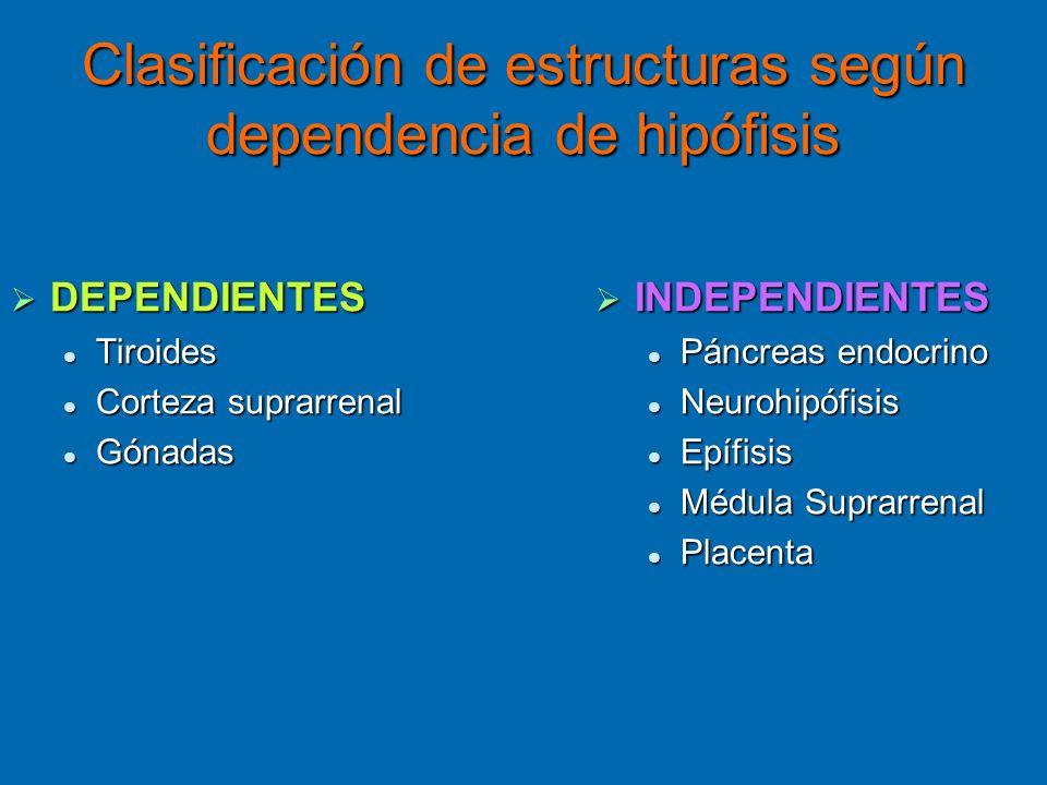 Clasificación de estructuras según dependencia de hipófisis