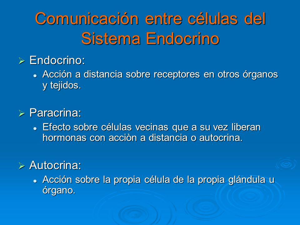 Comunicación entre células del Sistema Endocrino
