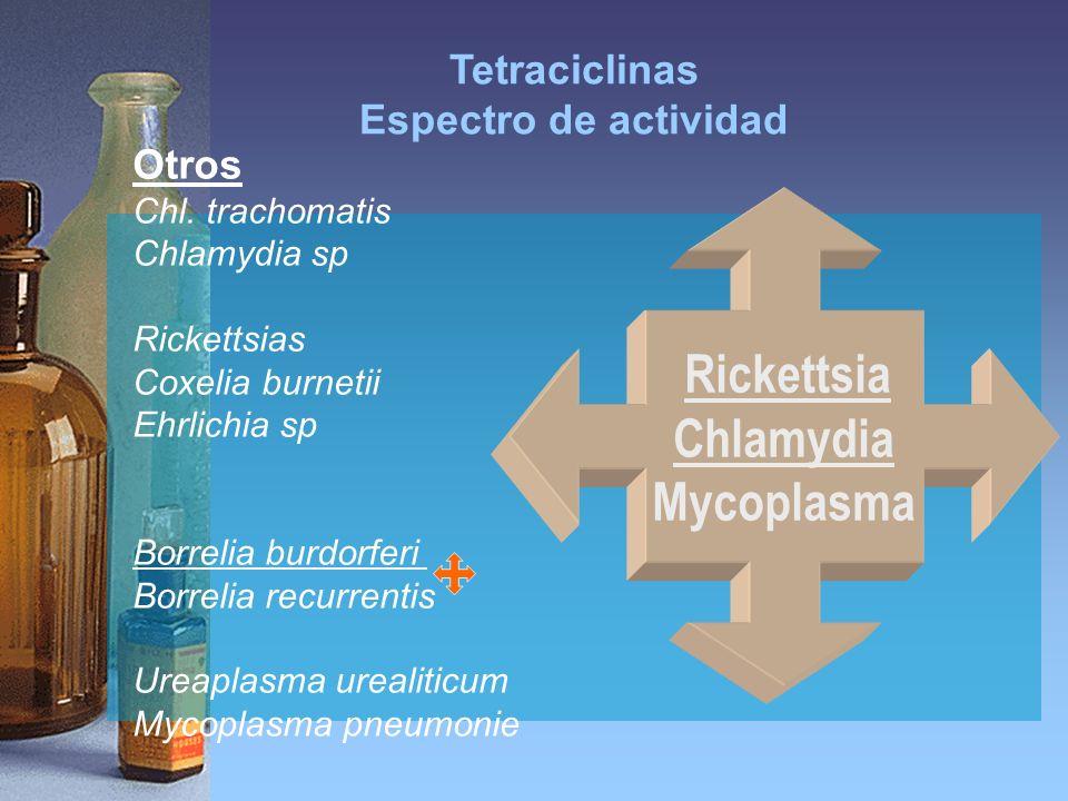 Chlamydia Mycoplasma Tetraciclinas Espectro de actividad Otros