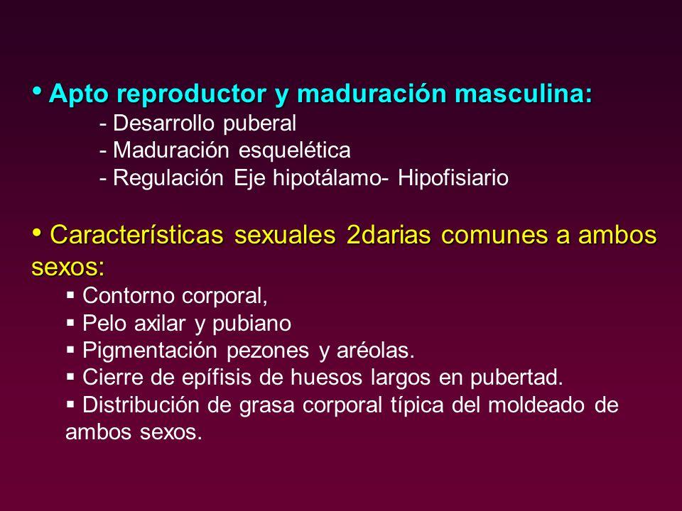 Apto reproductor y maduración masculina: