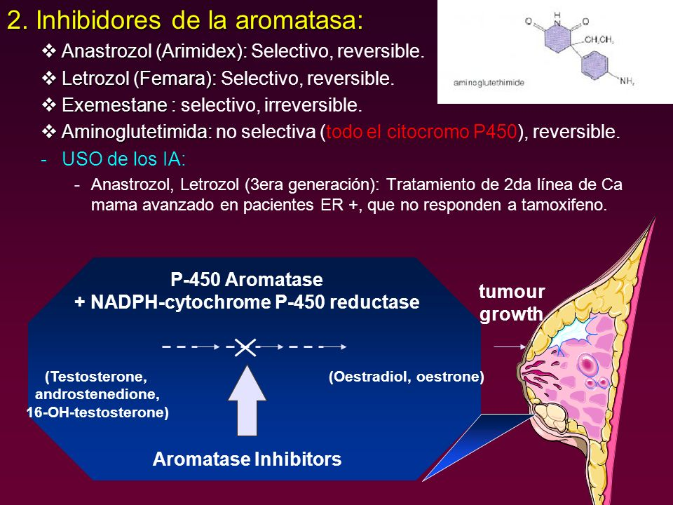 2. Inhibidores de la aromatasa: