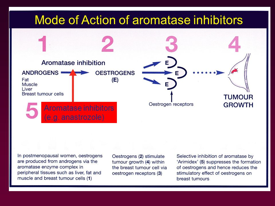 Mode of Action of aromatase inhibitors