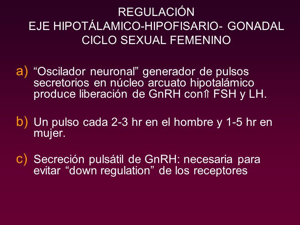REGULACIÓN EJE HIPOTÁLAMICO-HIPOFISARIO- GONADAL CICLO SEXUAL FEMENINO
