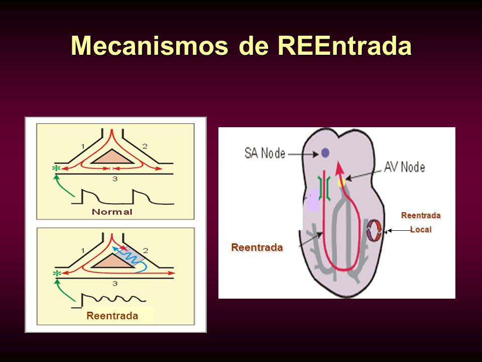 Mecanismos de REEntrada