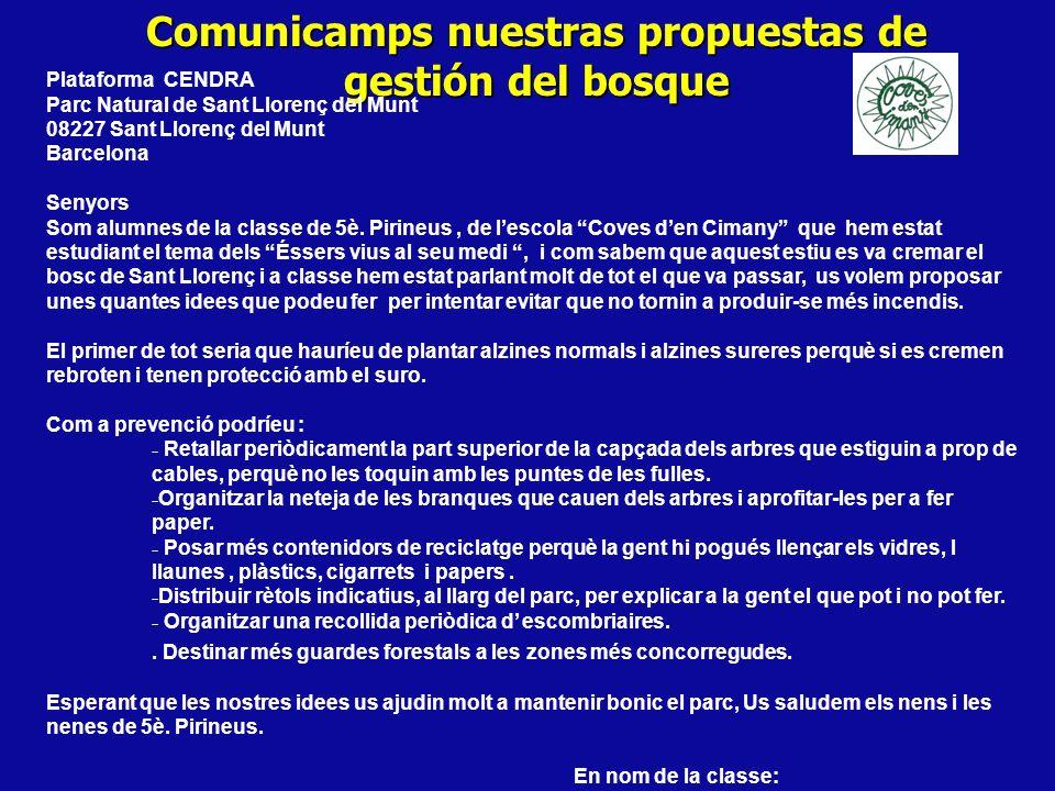 Comunicamps nuestras propuestas de gestión del bosque