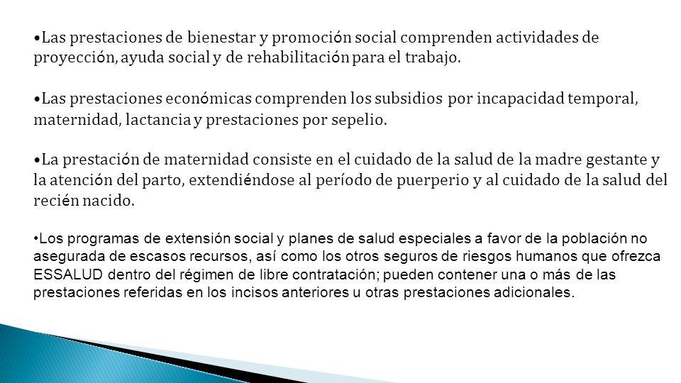 Las prestaciones de bienestar y promoción social comprenden actividades de proyección, ayuda social y de rehabilitación para el trabajo.