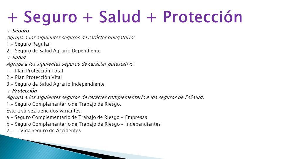 + Seguro + Salud + Protección