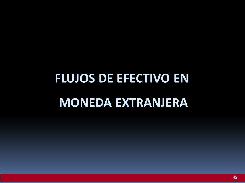 FLUJOS DE EFECTIVO EN MONEDA EXTRANJERA