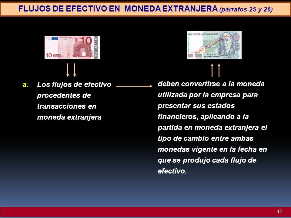 FLUJOS DE EFECTIVO EN MONEDA EXTRANJERA (párrafos 25 y 26)