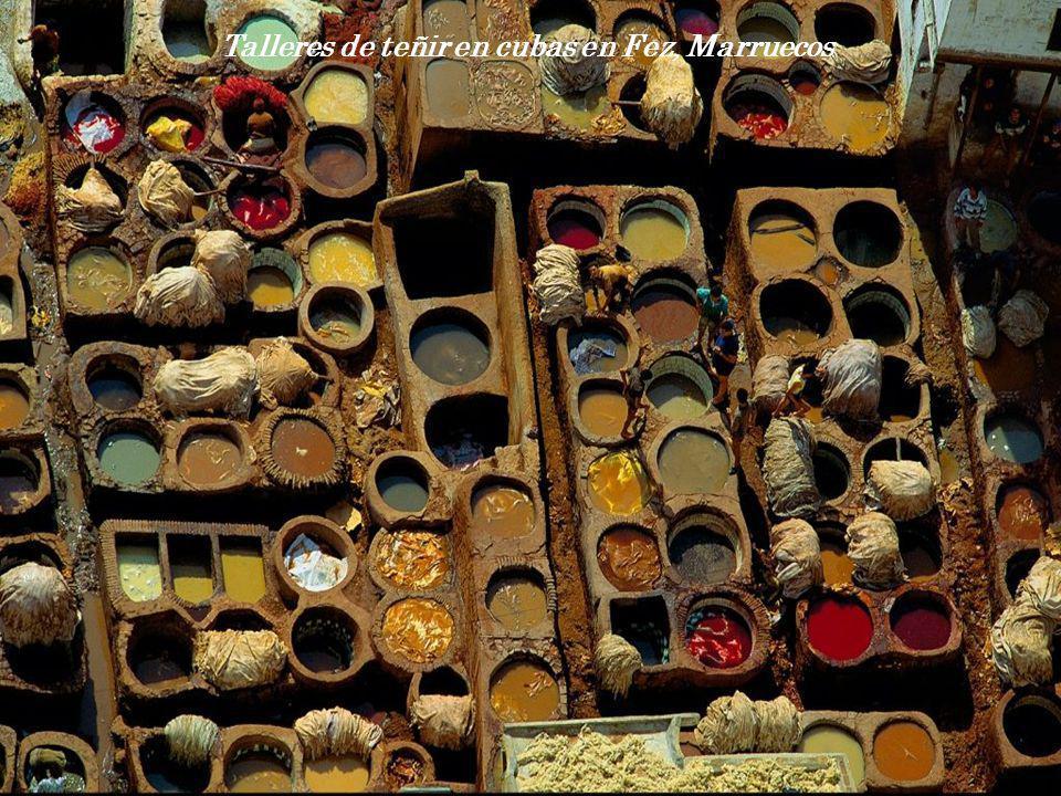 Talleres de teñir en cubas en Fez, Marruecos