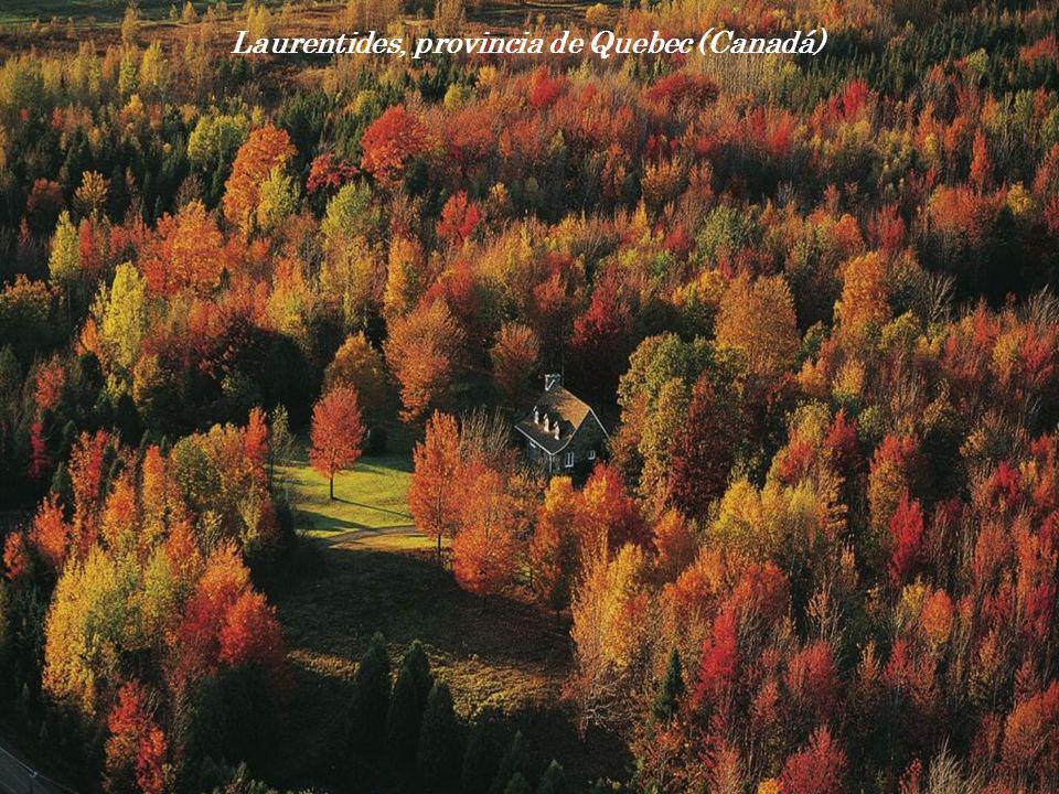 Laurentides, provincia de Quebec (Canadá)
