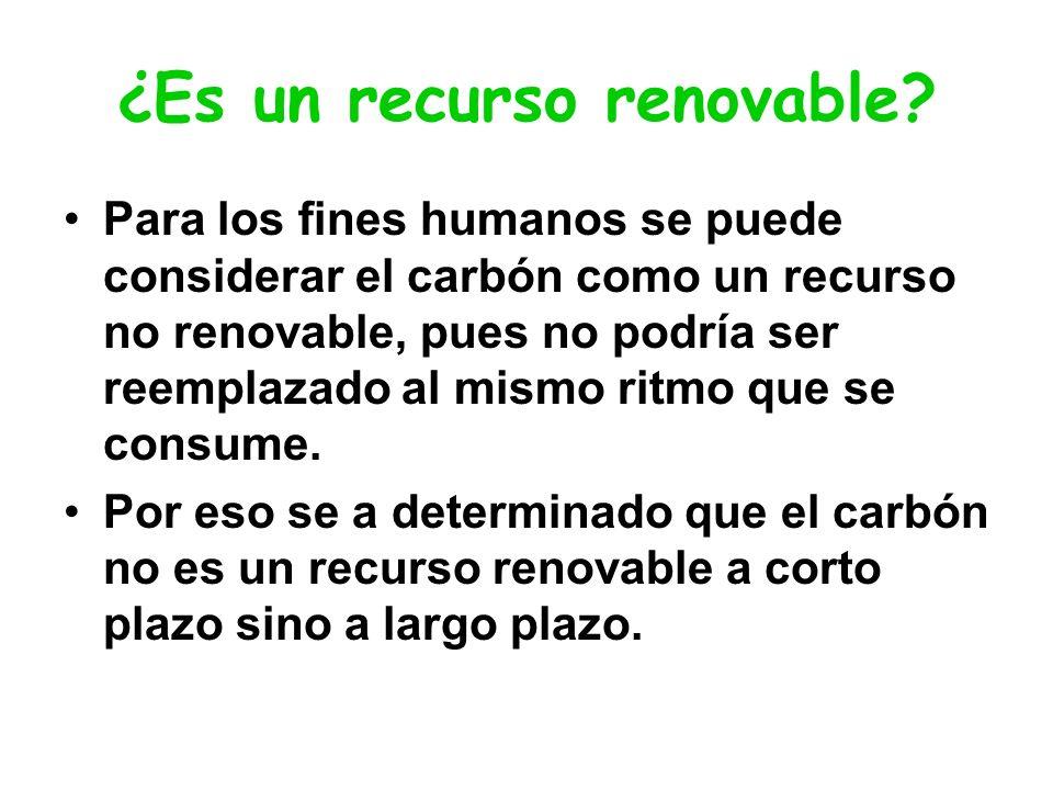 ¿Es un recurso renovable
