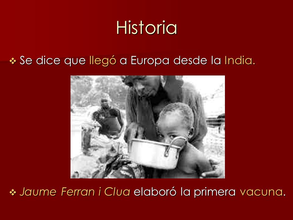 Historia Se dice que llegó a Europa desde la India.